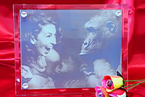 Girl & Gorilla saturated